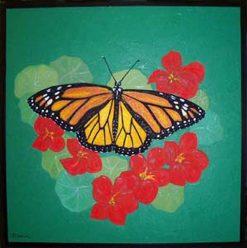 Monarch, framed by Susan Sternau