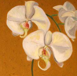 Orchid, 2 detail, by Susan Sternau