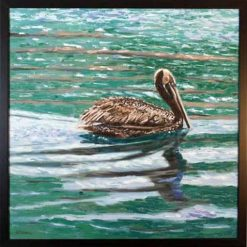 Pelican in frame, by Susan Sternau