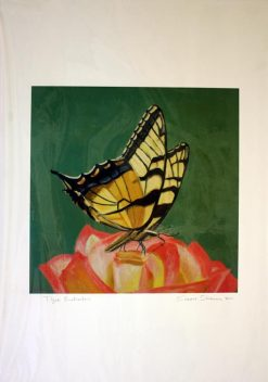 Tiger Swallowtail Butterfly, giclee print front